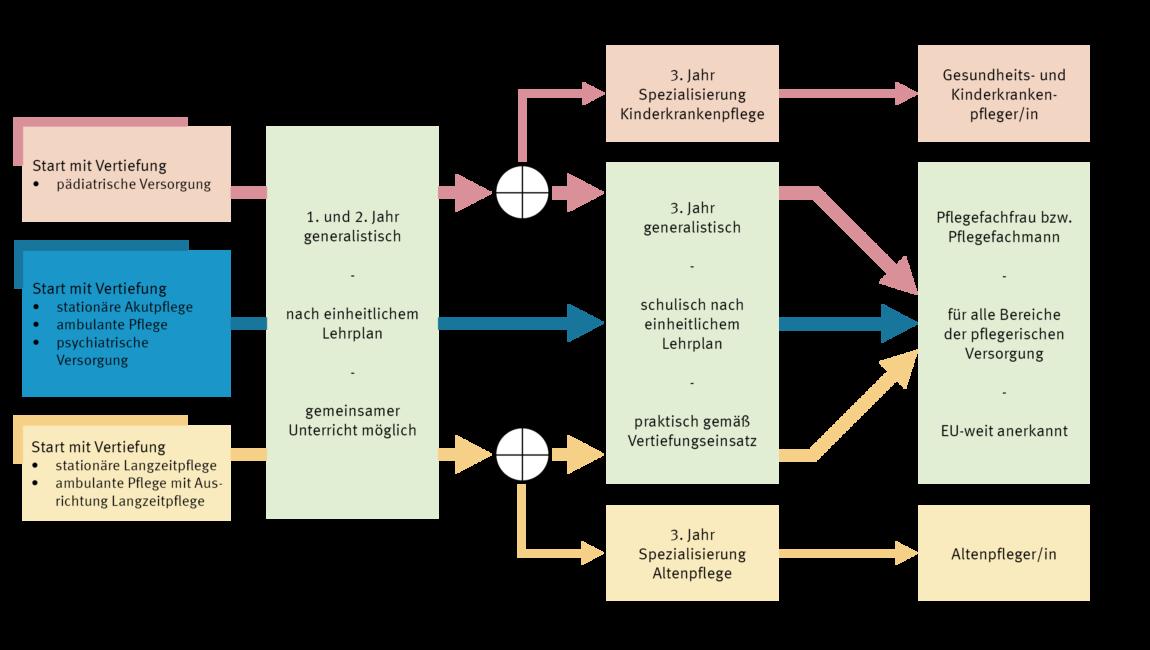 Grafik Ausbildungsgang 2